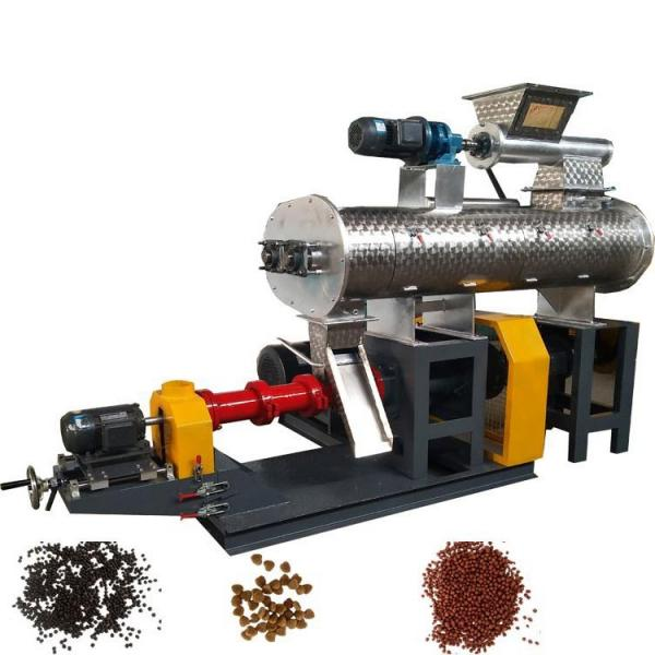 Agricultural Rice Pet Food Feed Processing Manufacturing & Processing Machine Freeze Dryer Machinery