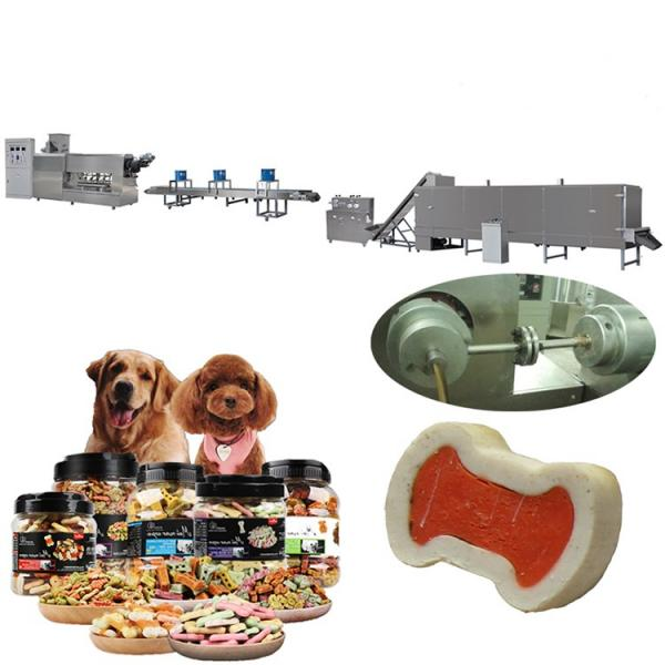 Automatic Pet Food Extruder Manufacturers