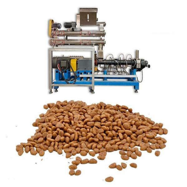Automatic Pet Food Rotary Packing Machine (GD6-300A)